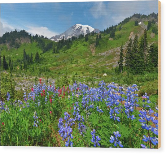 Wildflowers On Meadows Wood Print