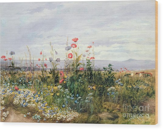 Wildflowers With A View Of Dublin Dunleary Wood Print