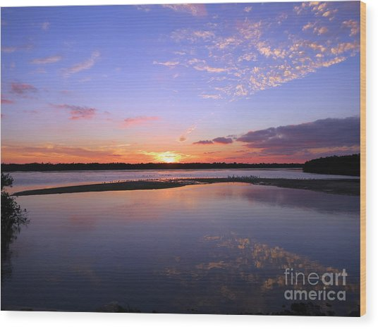 Wildlife Drive Sunset Wood Print