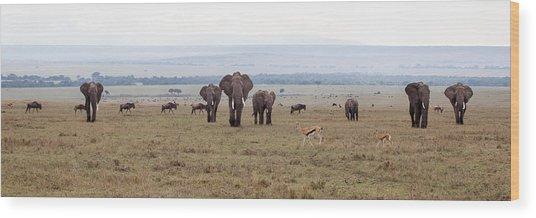 Wildlife On The Masai Mara - Kenya Wood Print