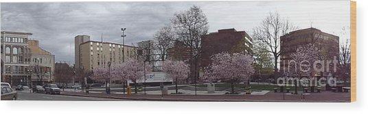 Wilkes-barre In Bloom Wood Print