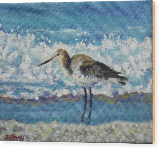 Willet Wood Print by Sharon Guy