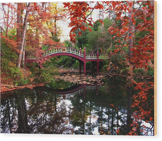 William And Mary College  Crim Dell Bridge Wood Print