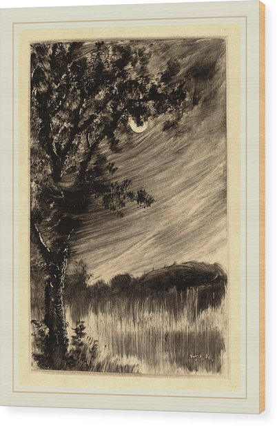 William Fowler Hopson, Moonlit Landscape With Tree Wood Print