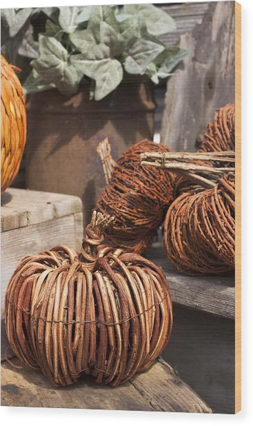 Willow Pumpkins Wood Print