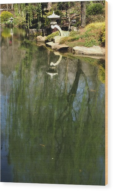 Willow Reflection 2 Wood Print