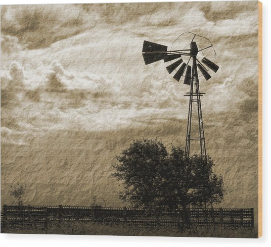 Wind Blown Wood Print