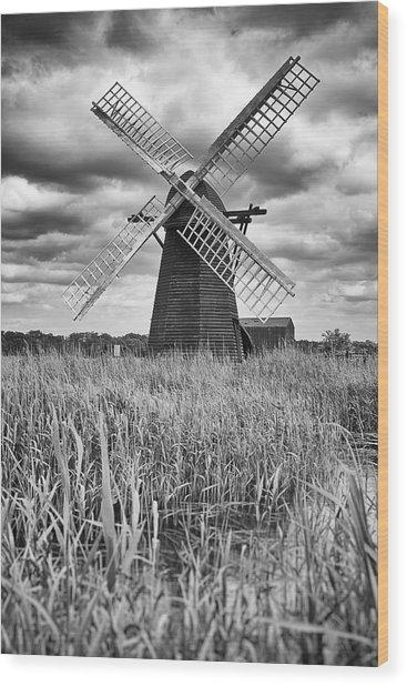 Wind Pump At Herringfleet Wood Print