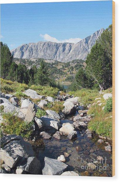 Wind River Range Wood Print