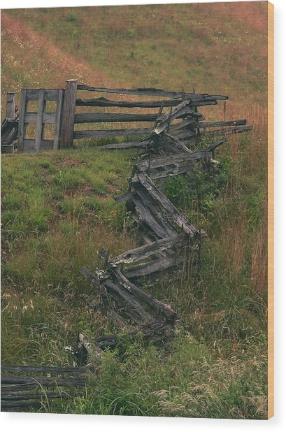 Winding Fence Wood Print by Bill Marder