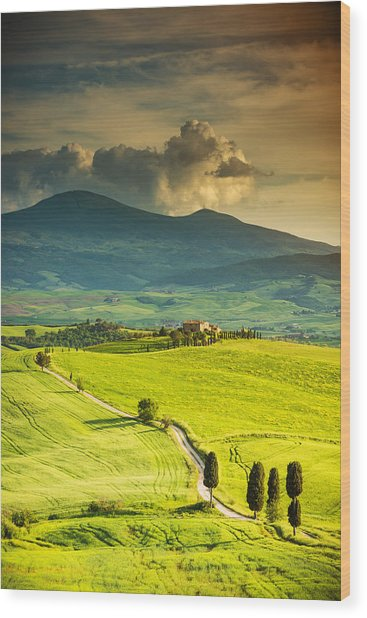 Winding Road In Tuscany Wood Print by Gehringj