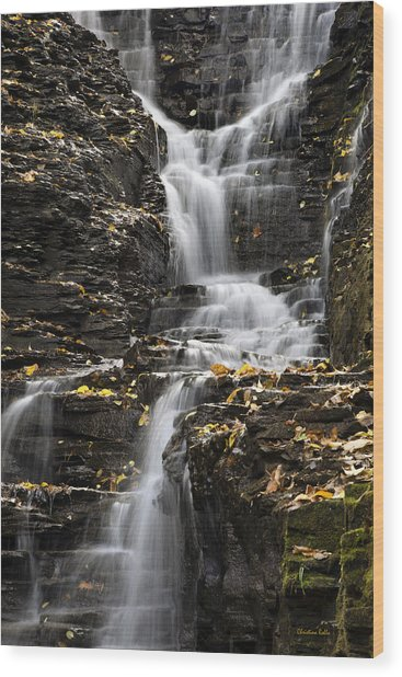 Winding Waterfall Wood Print