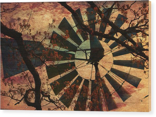 Windmill Through The Oak Wood Print