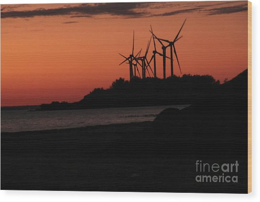 Windmills At Sunset Wood Print