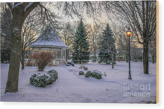 Wood Print featuring the photograph Windom Gazebo With Lamp by Kari Yearous