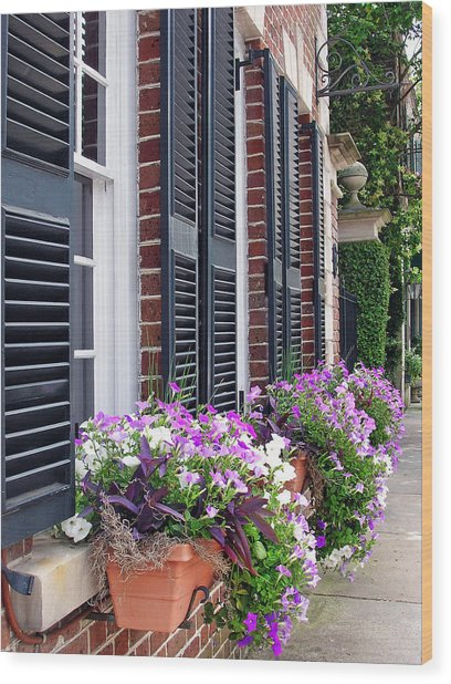 Window Box 2 Wood Print by Sarah-jane Laubscher
