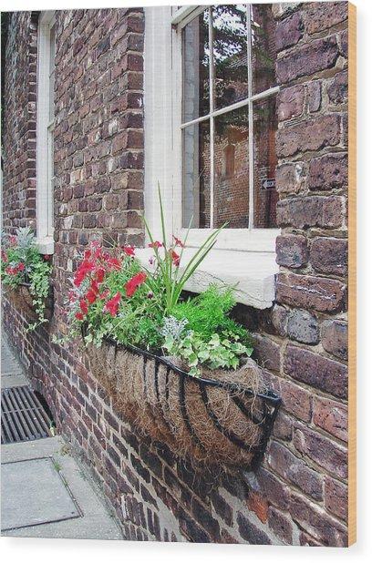 Window Box 3 Wood Print by Sarah-jane Laubscher