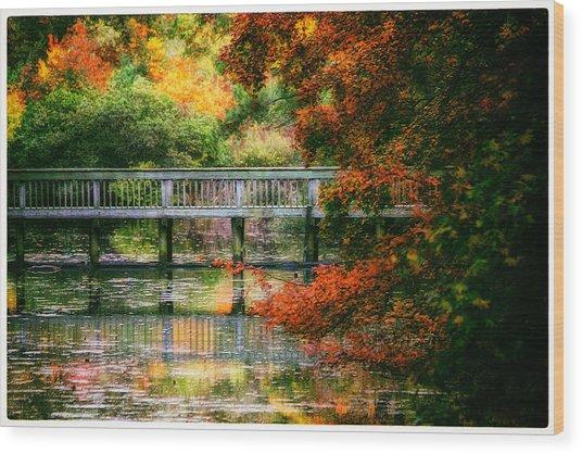 Window Into Autumn Wood Print