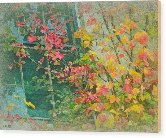Window Of Autumn Wood Print