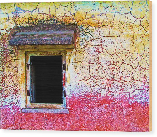 Window Of Opportunity Wood Print