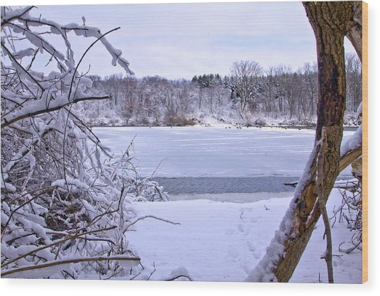 Window On The Lake Wood Print by Jim Baker