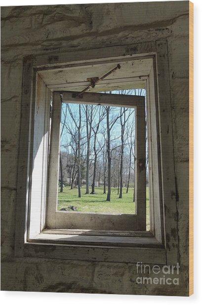 Window To The World Wood Print