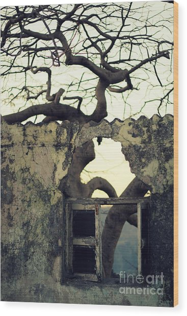 Window Wood Print by Vishakha Bhagat
