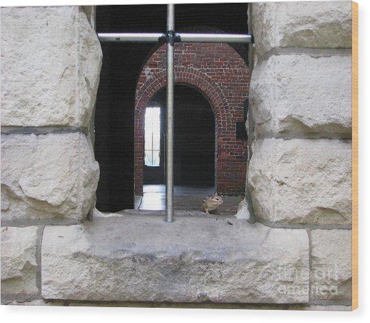 Window Watcher Wood Print
