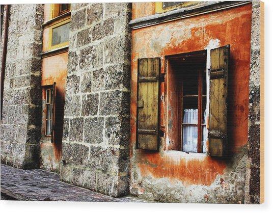 Windows Into The Past Wood Print