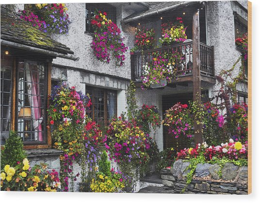 Windows Of Flowers Wood Print