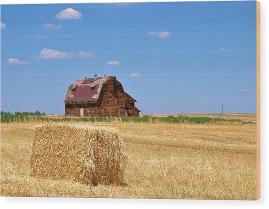 Windswept And Lonely Colorado Barn Wood Print