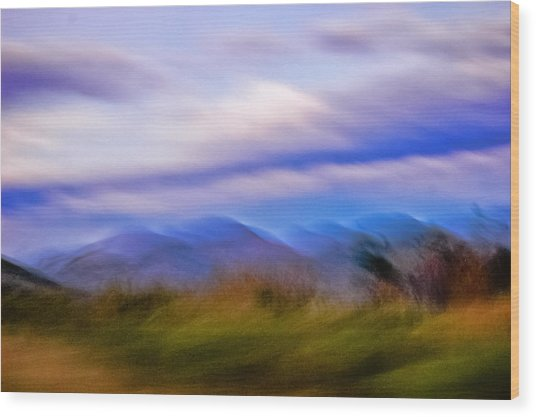 Windswept  Wood Print by LA Beaulieu