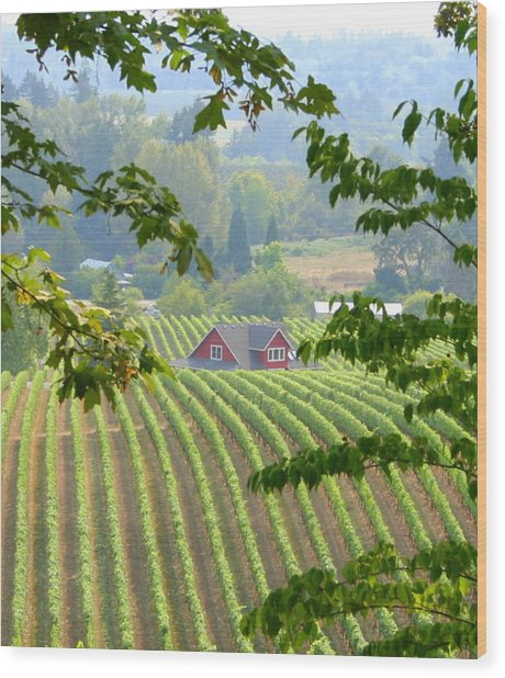 Wine Country Wood Print