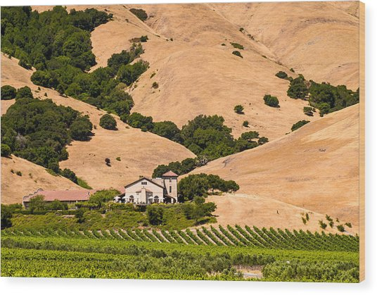 Wine Country Wood Print