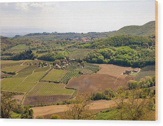 Wine Fields In Tuscany Wood Print by Jakob Montrasio