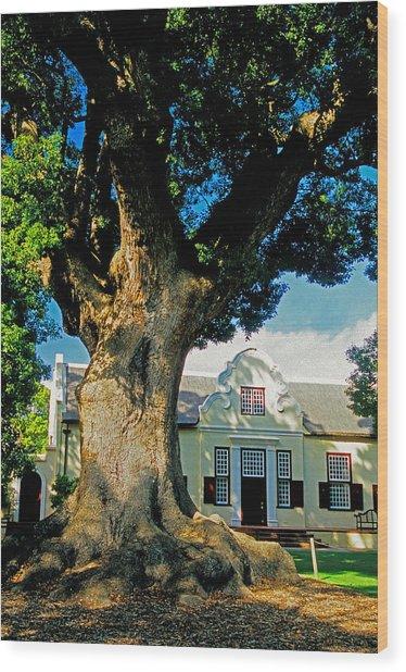 Winelands Manor Oak Wood Print