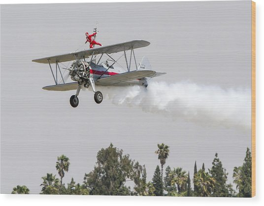 Wing Walker 1 Wood Print