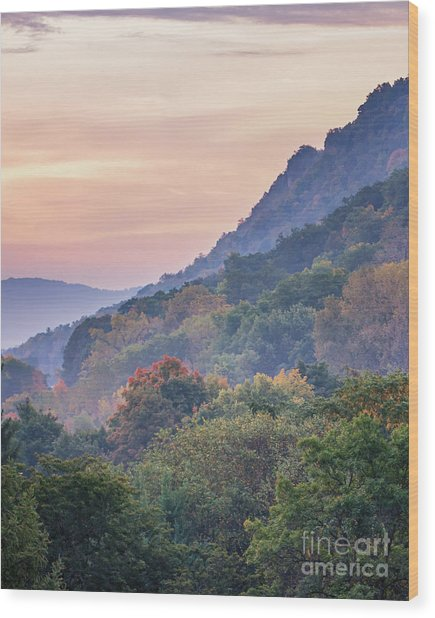Wood Print featuring the photograph Winona Fall Colors Slopes II by Kari Yearous