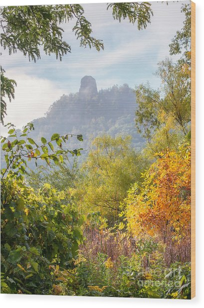 Wood Print featuring the photograph Winona Mn Souvenir Rainbow Sugarloaf by Kari Yearous