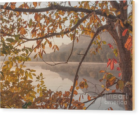 Wood Print featuring the photograph Winona Photograph Sugarloaf Through Leaves by Kari Yearous