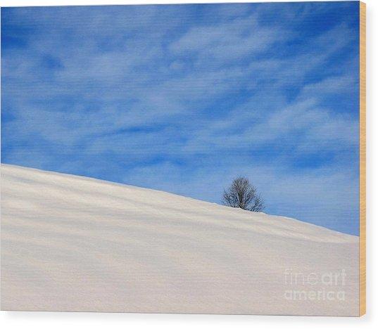 Winter 1 Wood Print by Vassilis Tagoudis
