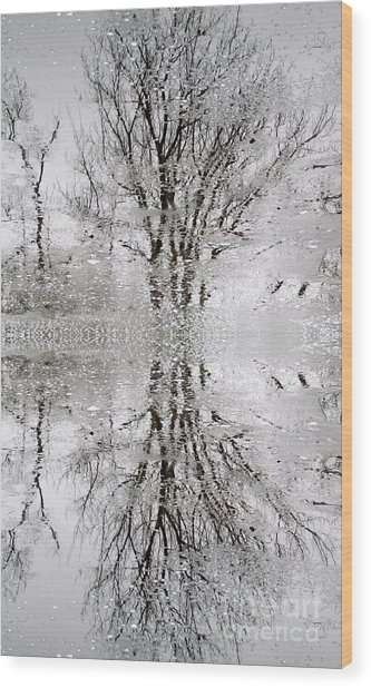 Winter Abstract Wood Print