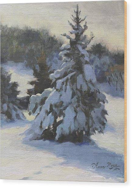 Winter Adornments Wood Print