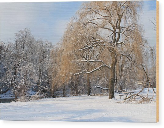 Winter Along The River Wood Print