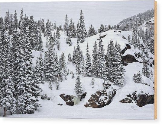 Winter At Bear Lake Wood Print