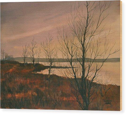 Winter At Lake Wilson Wood Print