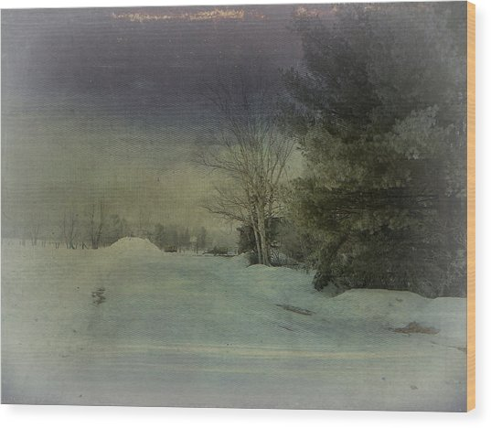 Winter Atmosphere  Wood Print by Dianne  Lacourciere