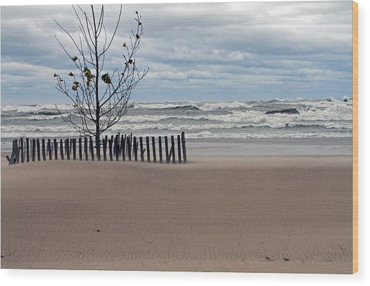 Winter Beach Wood Print