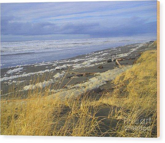 Winter Beach Wood Print