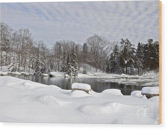 Winter Beauty Wood Print